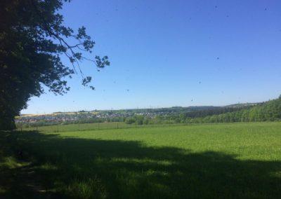 Eschhofen3